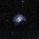 M 27 bicolor,                                FrancescoTallarico
