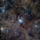 NGC1333 - a Reflection Nebula in LRGB,                                Richard Bratt