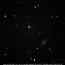 NGC 5981 + 82 + 85 - Draco Trio,                                roelb