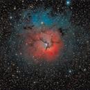 Trifid Nebula (M20, NGC 6514),                                Marko Emeršič