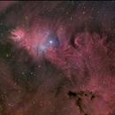 NGC2264,                                Bruno