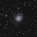 M101 (cropped),                                Jan Curtis