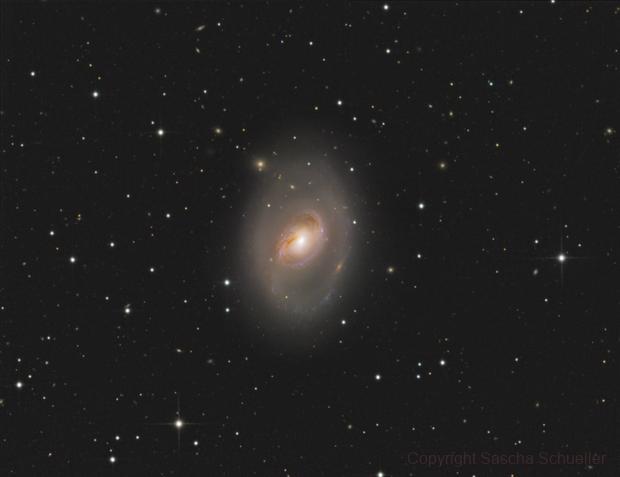 M96 Galaxy,                                Sascha Schueller