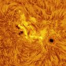AR 2781 - nice active region on Sun in H-a band,                                Łukasz Sujka