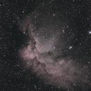 NGC7380 The Wizard,                                medojedlik