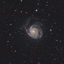M101,                                Marko R.