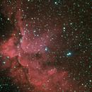 NGC7380,                                wunder