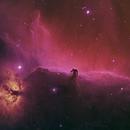 Horsehead Nebula,                                Janco