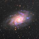 M33,                                Davide Manca