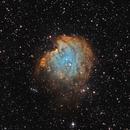 NGC2174, Monkey Head Nebula,                                photonjunkie
