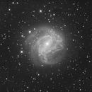 Southern Pinwheel Galaxy,                                Joel Bladen