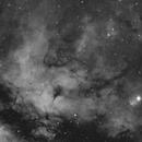 IC1318 Region,                                HarryH