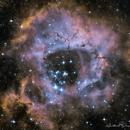 Rosette nebula NGC2237 in hubble palette,                                Dmitri Gostev