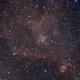 Heart Nebula - IC1805,                                Nicola