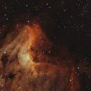 The Pelican Nebula in Bicolor Narrowband,                                Wes Higgins