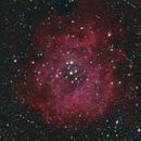 Rosette Nebula,                                Nikolay Kondrashov