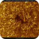 AR2769 in High Res (200mm) HA, Inverted,  08-05-2020,                                Martin (Marty) Wise