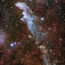 IC 2118 Witch Head Nebula,                                Wei-Hao Wang