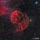 IC 443 Jellyfish Nebula,                                Francesco di Biase