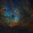 IC410 - Tadpoles Nebula in HST palette,                                Gordon Haynes