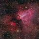 Omega Nebula (Messier 17),                                Miles Zhou