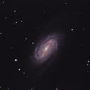NGC 2903,                                Robert St John