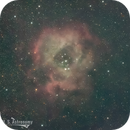 A rose by any other name?,                                Bostronomy