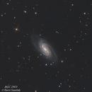 Galaxy NGC 2903,                                RAMI SAADAH