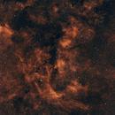 Nebulosity in Cygnus,                                Sendhil Chinnasamy
