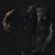 Cygnus Loop in H/H+O/O,                                Tony
