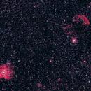 Monkey Head & Jellyfish Nebulae,                                Vencislav Krumov