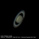 Saturno,                                Wagner Cardia