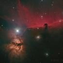 Horsehead Nebulae HaLRGB,                                Thilo Frey