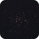 M44 The Beehive Cluster,                                Phil Hosey