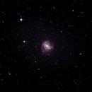 Southern Pinwheel (M83) - Widefield,                                HaydenAstro(NZ)