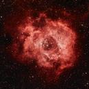 NGC 2244 Rosetta Nebular,                                Arne Stocker
