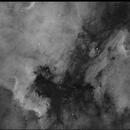 NGC-7000,                                Patrick Dubé