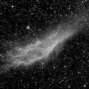 NGC1499 - California Nebula - Two Nights - Neewer 85 mm F2.5 - Ha,                                altazastro