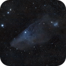 Blue Horse Head Nebula,                                Chien-Yu Chen