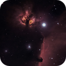IC434 The Horsehead Nebula in Ha OIII,                                Kevin Smith