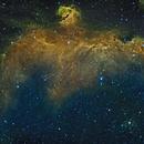 NGC 2177 - The Seagull Nebula,                                Timothy Martin & Nic Patridge