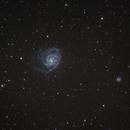 M101 and NGC 5474,                                Alexander Kiel