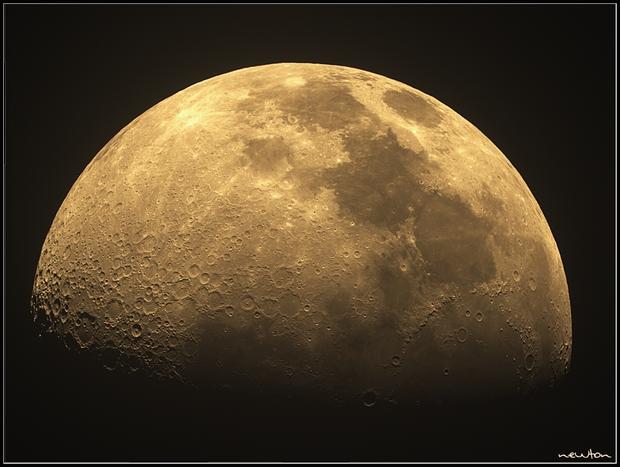 La bella Luna,                                Newton Cesar Flor...