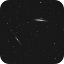 The Whale, the Pup and the Hockey Stick Galaxies, NGC 4631, NGC 4627 and NGC 4651,                                Steven Bellavia