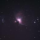 Orion Nebula (Untracked from kitchen window),                                Konrad Krebs