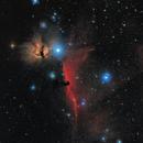 Horsehead Nebula,                                Doug Lozen