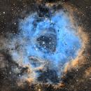 Rosette Nebula,                                Markice Stephenson