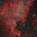 NGC7000,                                Rino
