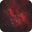 Propeller Nebula, DWB-111,                                Michael Dütting