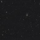 Virgo's Galaxies,                                Gabe Shaughnessy